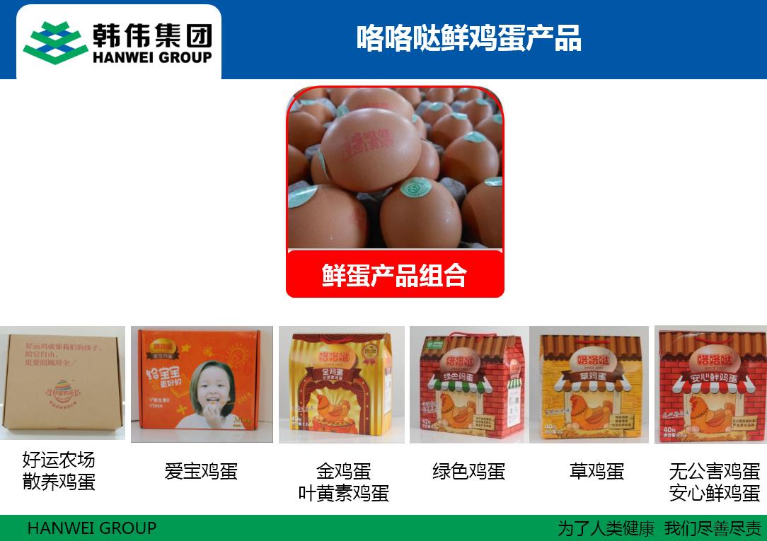 韩伟集团咯咯哒鲜鸡蛋产品
