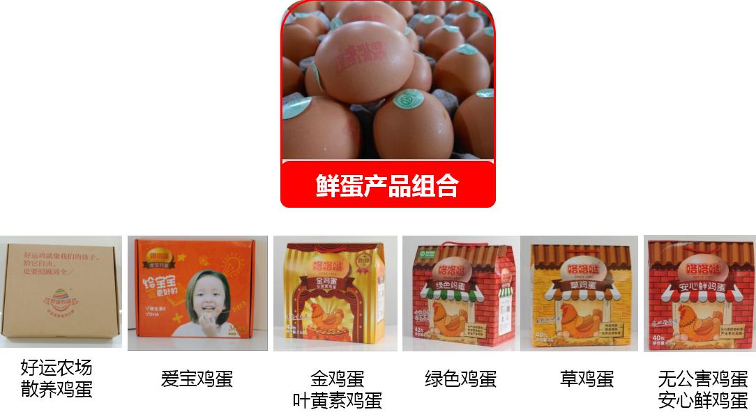 韩伟集团鲜蛋产品组合